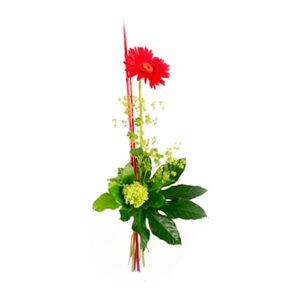Nivåbukett, med en röd blomma, grönt och dekorationspinnar. Finns att beställa hos Florister i Sverige.