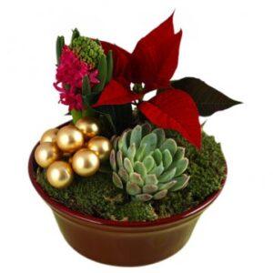 Julgrupp, traditionell. Beställ ett blomsterbud hos Florister i Sverige - önska god jul med blommor!