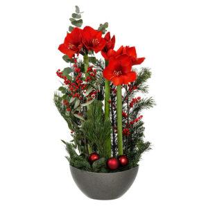 En julgrupp med snittamaryllis, ilex, grönt och julkulor. Amaryllisen i rött. Julgruppen finns hos Interflora.