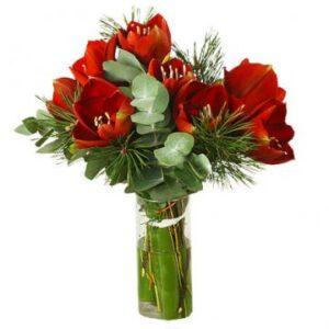 Blombukett med röda snittamaryllis och grönt. Skicka blommorna med ett bud från Florister i Sverige!