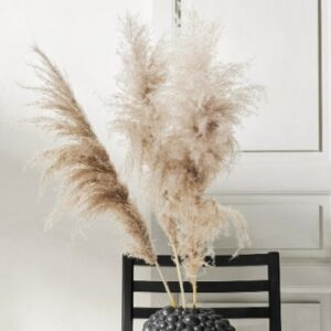 1 bunt med pampasgräs (= 5 strån). Skicka dem med bud från Florister i Sverige!