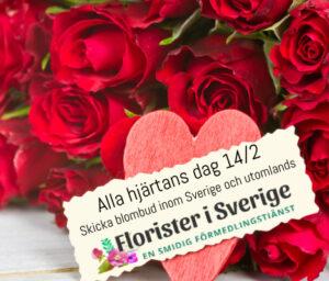 Skicka blombud på Alla Hjärtans Dag - beställ online hos Florister i Sverige