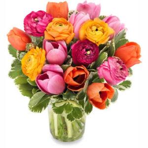 Bukett med tulpaner i blandade, glada färger. Skicka buketten med ett blomsterbud från Euroflorist - beställ enkelt online.