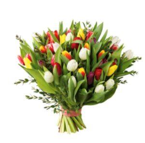 Bukett med tulpaner i blandade färger. Skicka dem med ett blomsterbud från Interflora!