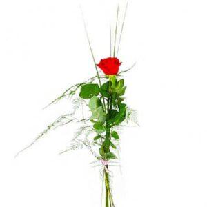 Enkel röd ros och grönt. Välj mellan två storlekar på rosen.