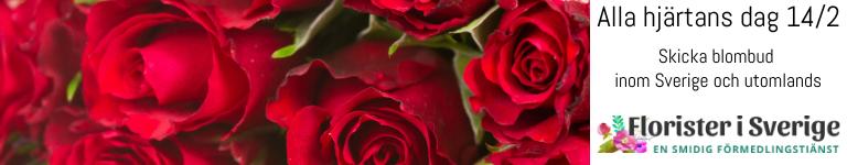 Skicka Alla Hjärtans Dag-blommor med bud via Florister i Sverige!